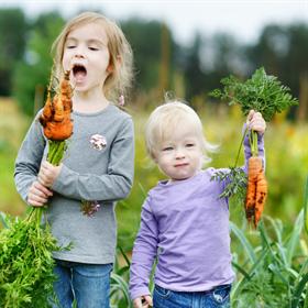 Hoe gezond eten onze peuters?