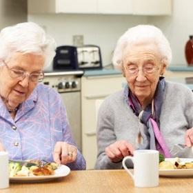 Seminar Healthy ageing