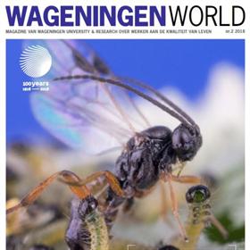 Een groeiend leger insecten beschermt het gewas